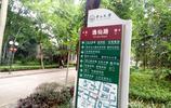 中山大學風景