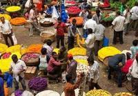最令人難忘的非洲菜市場,魚肉大蝦齊全,遊客:差一箇中國廚師