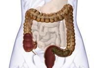 腸炎有什麼症狀和表現?