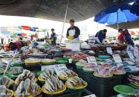 韓媒發文:中國人喜歡什麼什麼漲價,甚至影響了國際市場商品價格