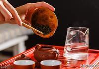 泡好一杯茶,放多少量茶葉最合適?