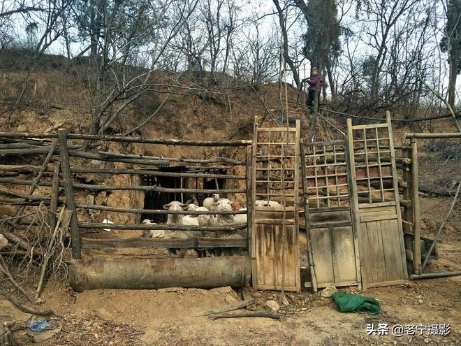 一個四戶人家的山村,一個86歲老人的堅守,一組可以讀懂的圖片