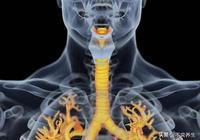 食養妙方——支氣管炎