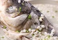 為什麼南方人做的魚,魚湯是白色的特別好喝,自己在家做魚怎麼做魚湯都不白?