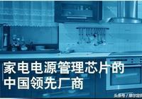讓電源芯片的巨無霸走下神壇,只有少數幾個中國人做到了!