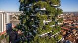 """全球首座森林公寓:一套賣兩千萬,和上萬棵樹""""共居""""你會住嗎?"""