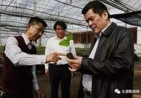 安慶太湖:省委農村工作領導小組調研農村改革工作