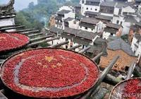 中國最能吃辣的4個省份 吃辣椒就像青菜白飯