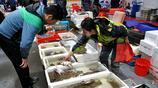 秋季吃海鮮來青島 碼頭鼓眼魚15元一斤 天氣越冷海鮮口感越美