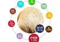 被忽略的猴頭菇,猴頭菇本身的營養價值不能因為廣告而被忽略?