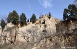行走中原—洛陽市洛寧縣東宋鄉丈莊村程家大院後的窯洞你見過嗎?