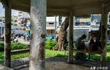 「行攝中的紅色越南」世界上最大華人社區 曾經繁華 如今這般模樣