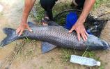 """浙江又新出一魚鉤:叫""""子線雙鉤"""",只要魚一碰,輕鬆釣魚不脫鉤"""