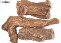 中藥材木香
