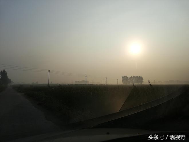 馬上秋收了,河南農民還盼雨,不下就晝夜不停澆地,這到底為了啥