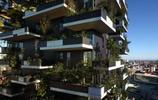實拍:全球第三個耗資十億的森林建築,將在中國南京建成