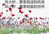劉墉經典語錄摘抄
