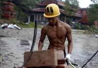 每天搬磚能練出一身肌肉嗎?福利貼