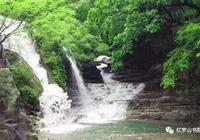 鄭喜豔:夢在青山綠水間——春遊九蓮山