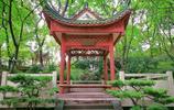 私人宅院、工廠舊址,在重慶都成了網紅景點