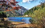 旅遊圖集 四川九寨溝旅遊之行 在最美的秋季遇見你!