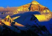 """科普:飛越世界第一峰——珠穆瑪拉峰的""""神鳥"""""""