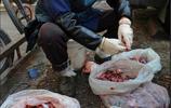 76歲老太太每天去菜市場撿魚內臟,得知事情真相後把我感動哭了!