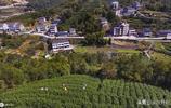 它是浙江省人口最多的城市,溫州人被稱之為東方猶太人