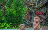 花果山,尋找美猴王