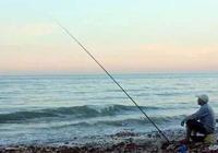 臺釣的子線、調目、修皮小技巧