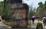雲南昆明動物園之旅,市民和遊客們都不會錯過這個勝景