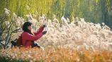 北京圓明園冬日美景如詩如畫