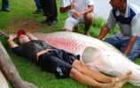 巴西出現巨型舌骨魚,體重達上百公斤,網友稱一條夠他吃一年