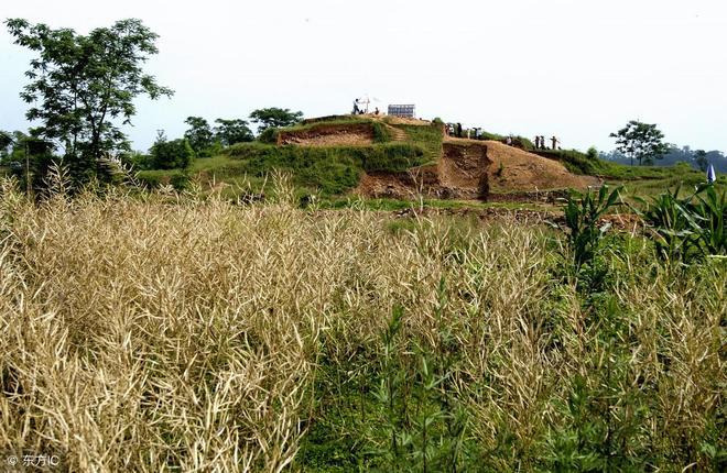 一座古窯,埋藏10萬件瓷器,村民撿來砌豬圈,如今成為一級國寶