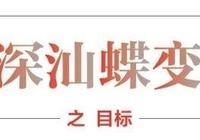 深汕之約:大灣區憧憬下擘畫三年之變