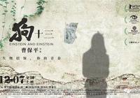 """《狗十三》滿滿的""""中國式殘酷青春""""!"""