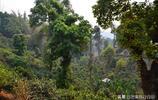 雲南深山有個地方,曾經是個貧困村,如今成為別墅林立的土豪村