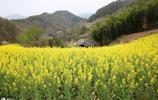 農村夫妻生活在大山裡真自在,環境美空氣好,一年到頭還不少弄錢