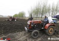 如果每畝土地每年給你1000元,你願意把土地流轉出去嗎?為什麼?
