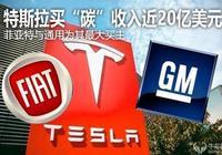 """特斯拉賣""""碳""""收入近20億美元 菲亞特與通用為其最大買主"""