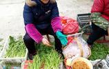"""新安江深渡早市,鄉村""""野味""""1元1斤少有人買,城市卻當稀罕物"""