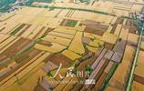 河南宜陽:中原糧倉 美如畫卷