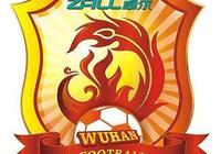 南京企業接了武漢足球的班,從金融市場到足球,豐盛卓爾啥關係?