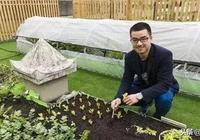 這位30歲山東小夥可能起點比你還低,卻憑藉直播種菜年入70萬