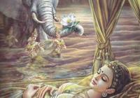 釋迦牟尼的故事 釋迦牟尼的一生