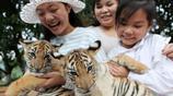 國慶中秋長假 重慶遊客與野生動物親密接觸