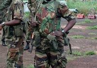 以岡比亞軍隊現在的實力,可以戰勝哪些國家呢?