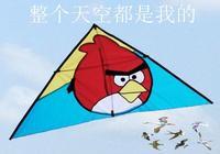 驕傲的風箏