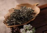 白茶資訊,你該知道的白茶知識