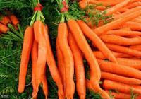 胡蘿蔔要怎麼施肥?胡蘿蔔的施肥技術